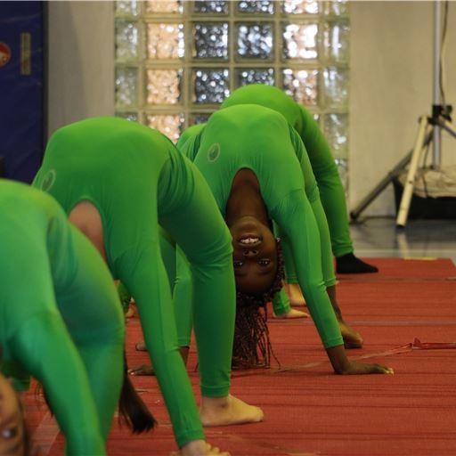 Gymnastics Show 2016